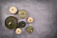 Various Green And White Pumpkins, Squashes And Gourds On Gray Background With Copy Space