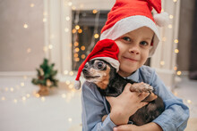 A Little Boy In A New Year's Hat Holds A Dog With A Dwarf Pinscher