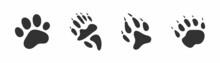 Animals Footprints, Paw Prints. Set Of Different Animals And Birds Footprints And Traces. Cat, Lion, Tiger, Bear, Dog, Coati.
