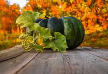 A Large Green Pumpkin On A Wooden Countertop Against The Background Of An Autumn Garden.