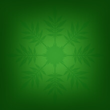 Green Square Illustration With A Snowflake In The Center.