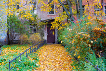 View Of Alley With City House, Autumn Tree, Fallen Golden Leaves On Sidewalk