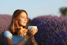 Woman Drinking Coffee Contemplaing In Lavender Field