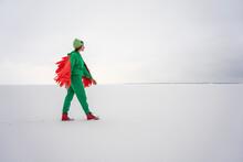 Woman In Bird Costume Walking On Snow
