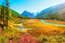 Atmospheric Autumn Landscape With Swamp And  River In Mountains. Path Along The Swamp. Beautiful Alpine Landscape With Azure Water In Fast River. Power Majestic Nature Of Highlands.