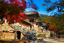Breathtaking Shot Of The Fall At Bulguksa Temple In Gyeongju, South Korea