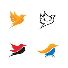 Bird Logo Icon Set