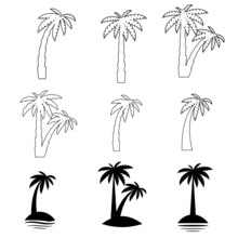 Set Tropical Palm Trees With Leaves, Mature And Young Plants, Black Silhouettes Isolated On White Background.