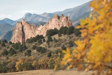 Golden Fall Leaves Frame The Rock Formations At Garden Of The Gods In Colorado Springs
