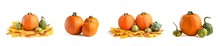 A Large Set Of Small Pumpkins And Pumpkin In A Wicker Basket, For Halloween Decoration. Isolate On White Background. Autumn Set Of Decorative Pumpkins And Maple Leaves.