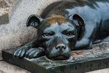Sallie The Regimental Dog, Gettysburg National Military Park, Pennsylvania, USA