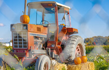 A Tractor Displays An Autumn Bounty In Farm. A Tractor Decorated With Hay And Pumpkins For Thanksgiving And Halloween.