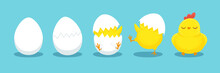 Chicken Hatching. Cracked Chick Egg, Hatch Eggs And Hatched Easter Chicks Cartoon Vector Illustration