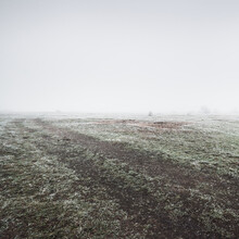 Pathway Through The Field In A Thick White Fog. Hoarfrost, First Snow. Protected Rural Area. Picturesque Panoramic View. Autumn, Early Winter. Pure Nature, Environmental Conservation, Ecology
