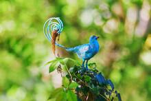 Blue Metal Bird In Park Or Garden