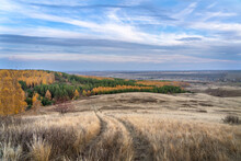 Autumn Landscape. View From The Hill To The Colorful, Multi-colored Forest. The Road Descends Into The Forest. Dramatic Sky In The Evening