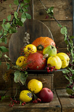 Quinces (Cydonia Oblonga) With Leaves, Hokkaido Gourds (Cucurbita Maxima), Apples And Rose Hips On Rustic Wooden Crate