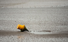 Selective Of A Yellow Buoy On The Beach