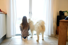 Back View Of Girl And Her Dog Looking Through French Door