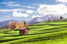 Italy, Trentino Alto-Adige, Vigo Di Fassa, Barn On Alpine Meadow