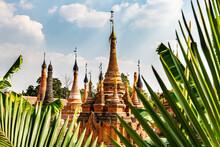 Myanmar, Shan State, Samkar, Palm Tree Leaves Against Taw Mwe Khaung Pagoda