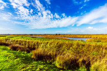 Grassy Field With Canal