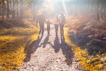 Parents Holding Hand Of Children While Standing In Park During Autumn