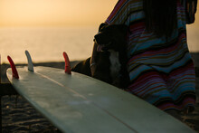 Crop View Of Young Woman Sitting On  The Beach With Her Dog And Her Surfboard At Sunset, Almeria, Spain