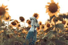 Shoes In A Field Of Sunflowers