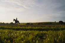 Woman Riding Horse On A Field In The Countryside At Sunset