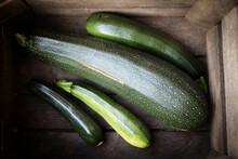 Germany, Box With Different-sized Zucchinis