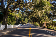 USA, South Carolina, Beaufort, Oak Tree Alley