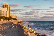 Seagulls On Sea Shore At Miami Beach Against Sky, Florida, USA