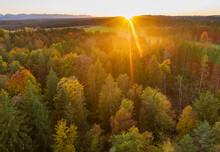 Germany, Bavaria, Upper Bavaria, Toelzer Land, Konigsdorf, Aerial View Of Autumn Forest At Sunset