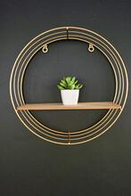Flowerpot On Wooden Board, Black Wall With Golden Frame