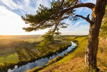Germany, Baden-Wuerttemberg, Hessigheim, Neckar Valley, Neckar River, Neckarbecken,  Hessigheimer Felsengaerten Nature Reserve