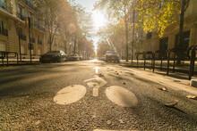 France, Paris, Street With Cyclist Sign On Asphalt In Autumn
