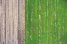 Germany, Bavaria, Aerial View Of Field
