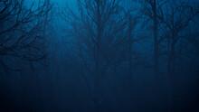 Creepy Halloween Woodland Illustration At Night.