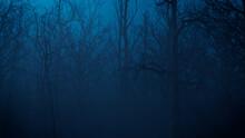 Eerie Halloween Woodland Scene At Night.