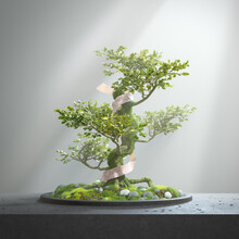 Arrangement Of A Wrapped Magical Bonsai Tree On Moss And Stones