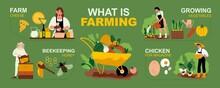 Farm Infographic Set
