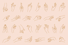 Vector Hand Gestures Set Of Abstract Logo Template. Crossed Fingers, Open, Close, Ok Gesture, Reaching Hand And Etc. Linear Isolated Elements .