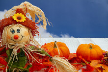 Fall Leaves, Scarecrow, And Pumpkins On Weathered Wood With Sky
