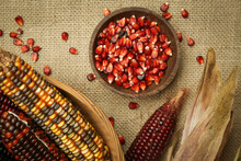Decorative Indian Corn Seeds In Bowl. Multi Colored Flint Corn On Wooden Background With Copy Space.