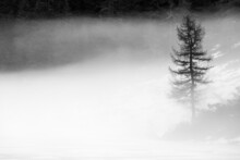 Misty Day On Alpine Lake