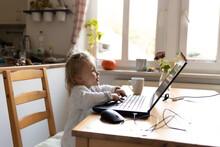 Im Homeoffice – Kleines Mädchen Sitzt Vor Laptop Und Arbeitet