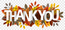 Thank You Lettering On Autumn Leaves Isolated Transparent Background Vector