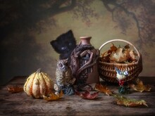 Funny Autumn Picture With A Little Black Kitten