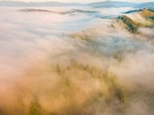 A Thin Morning Fog Covers The Ukrainian Mountains. Green Grass On The Slopes Of The Mountains. A Curly Thin Fog Spreads Over The Mountains. Aerial Drone View.